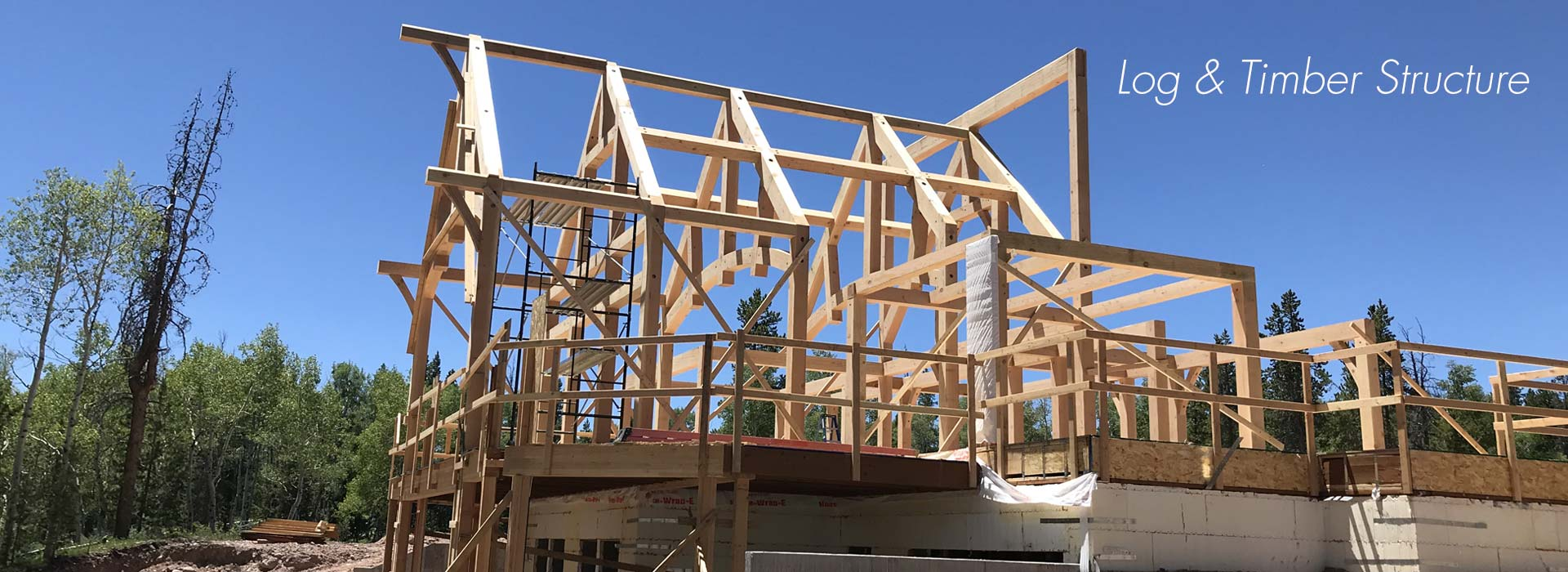 Timber Frame Structure