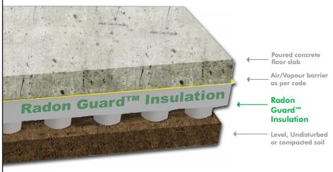 Radon Guard